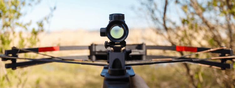 Best Recurve Crossbows For Deer Hunting