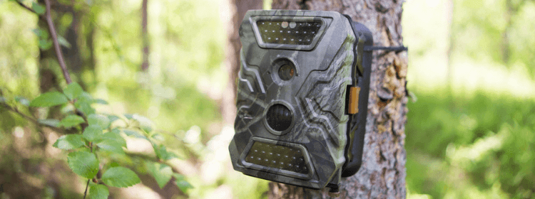 Is it legal to put trail cameras on public land?